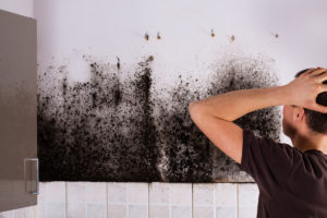 Health symptoms of household mold