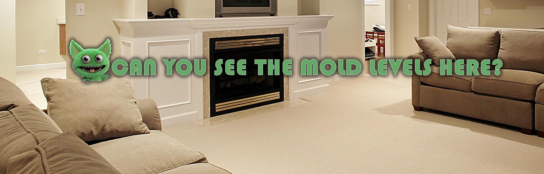 moldslide1