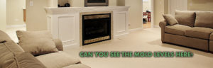 mold growth in NJ homes